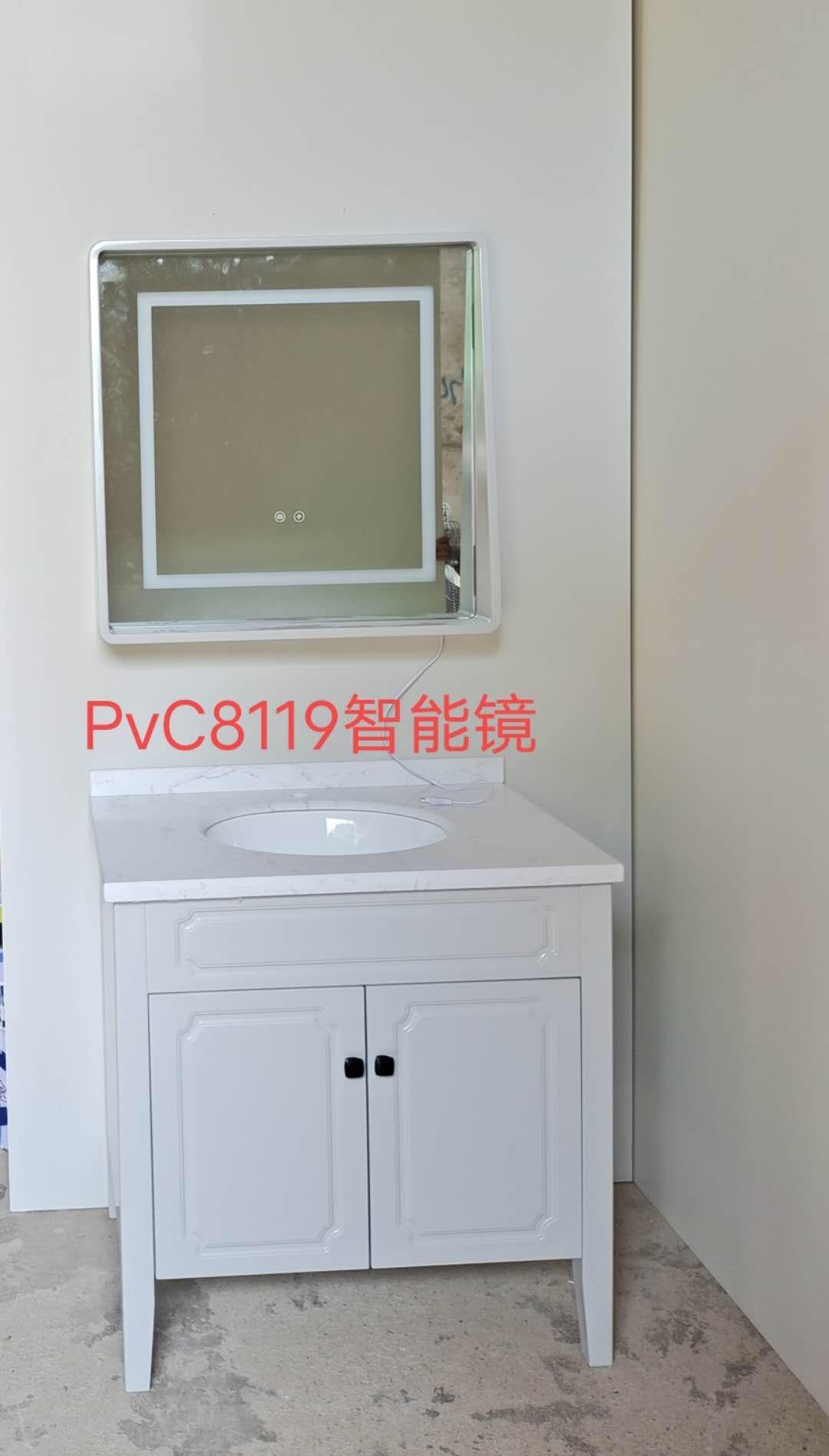 pvC8119