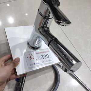ZSD-5262W抽拉面盆龙头
